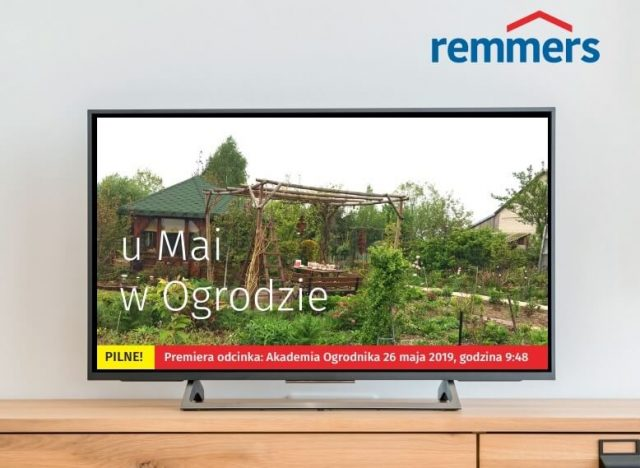 Remmers on television: product placement and sponsoring